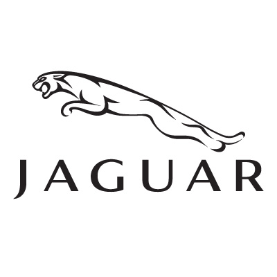 https://estioptics.pl/wp-content/uploads/2020/06/jaguar-vector.jpg